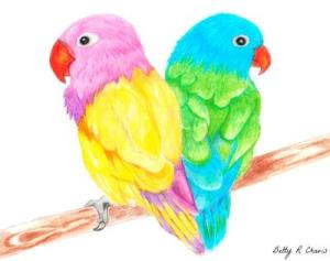 drawing pencil colored drawings bird birds easy sketches animals colors chavis betty getdrawings