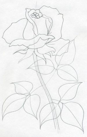 draw rose easy drawings simple sketches drawing realistic very