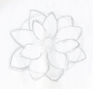 flower drawing flowers drawings lotus sketch sketches simple easy pencil step beginner cliparts paintingvalley clip rough enlarge library clipart