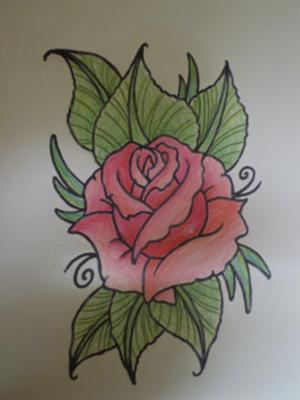 rose easy drawing drawings roses pencil sketches simple painting cool techniques draw oil tattoo flowers pencils flower colorful coloured sketch