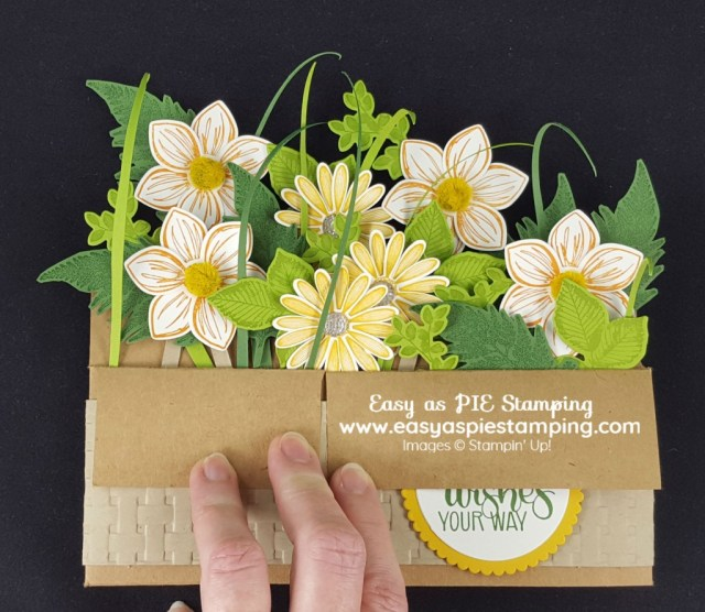 Daisy Lane Pop-up Box