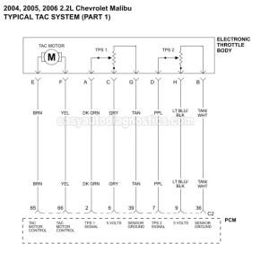 TAC Circuit Wiring Diagram (20042006 22L Chevrolet Malibu)