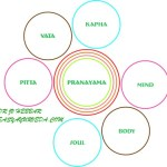 Types Of Pranayama – Effect on Health – Through An Ayurveda Microscope
