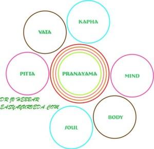 https://i0.wp.com/easyayurveda.com/wp-content/uploads/2012/11/Pranayama-Ayurveda.jpg?resize=300%2C290