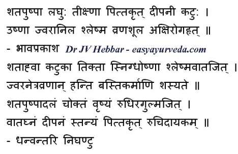 Dill - health benefits - Ayurveda