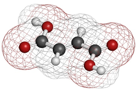Fumaric acid molecule - conventional color coding: hydrogen (white), carbon (grey), oxygen (red).