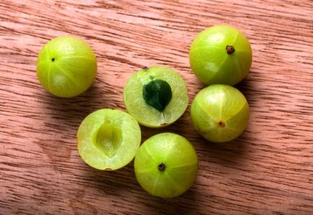 Amalaki - Amla - Indian Gooseberry