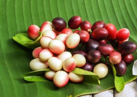 karonda fruits