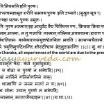 Purusha: Definition, Types, Characteristic Features