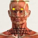 Avarta Marma: Location, Components, Effect Of Injury