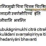 Bhedaneeya Gana Of Charaka- Cathartics: Review, Benefits, Formulations