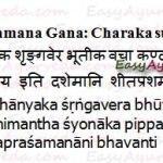 Sheeta Prashamana Gana – Herbs that Relieve Cold Sensation
