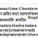 Udarda Prashamana Gana – Anti Allergic Herb Group Of Charaka