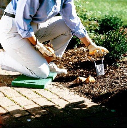 Bulb Planter Tool Makes Gardening Easier Easy Backyard Gardening