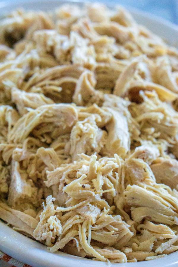 A plate full of shredded chicken.