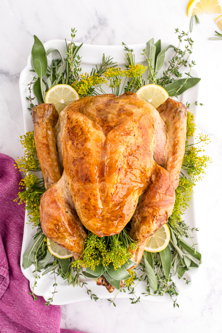 An overhead picture of the finished roast turkey.