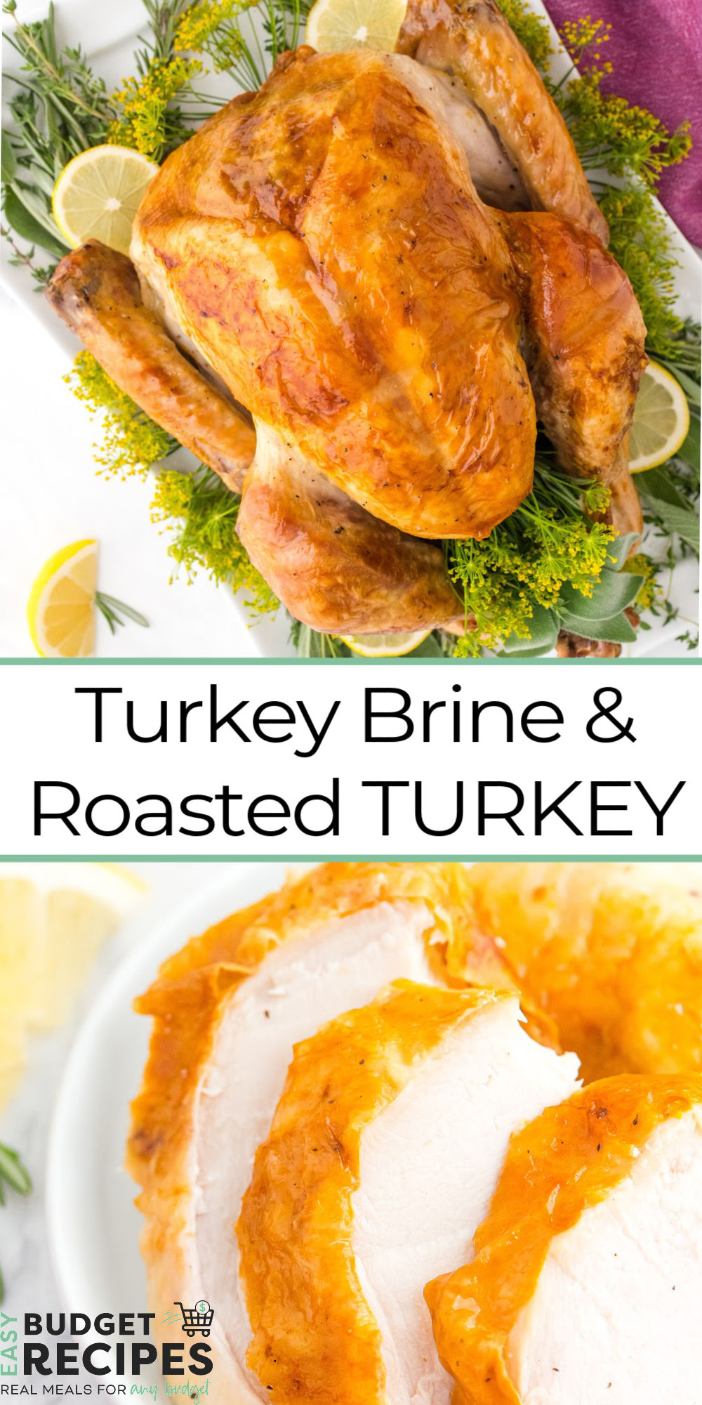 This Easy Turkey Brine and Roast Turkey recipe is succulent, juicy, and cooked to golden-brown perfection. This turkey has so much flavor and it will be the star of your Thanksgiving table. via @easybudgetrecipes