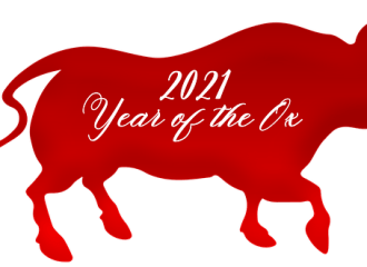 chinese-new-year-5815901_640