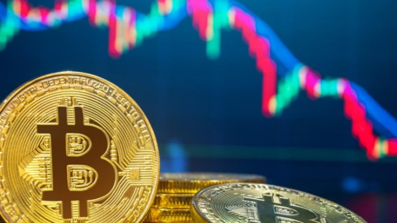pemiliki pemilik bitcoin terbanyak di dunia