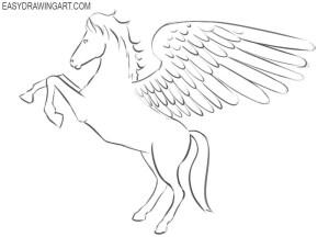 pegasus draw easy drawing step