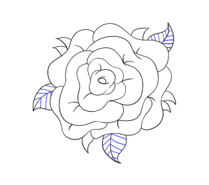 rose flower draw drawing easy drawings simple step easydrawingguides guides