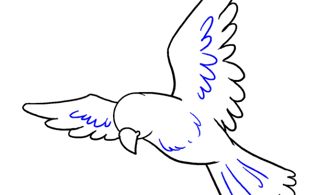How To Draw Bird Easy Drawing Bird For Children Step By Cuitan Dokter