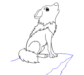 How to Draw a Cartoon Wolf in a Few Easy Steps Easy Drawing Guides