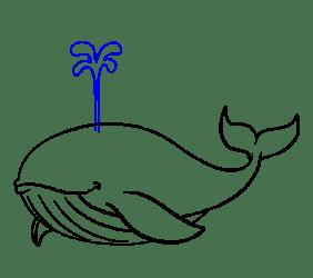 Drawing Blue Whale Cartoon