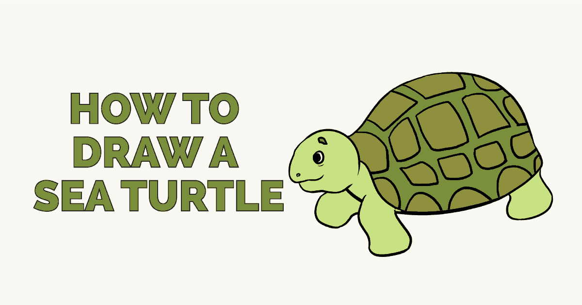 How to Draw a Sea Turtle  Really Easy Drawing Tutorial