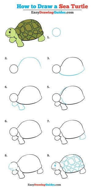 turtle sea draw step easy drawing tutorial beginners animals really drawings steps easydrawingguides learn fish turtles simple tutorials pattern doodle