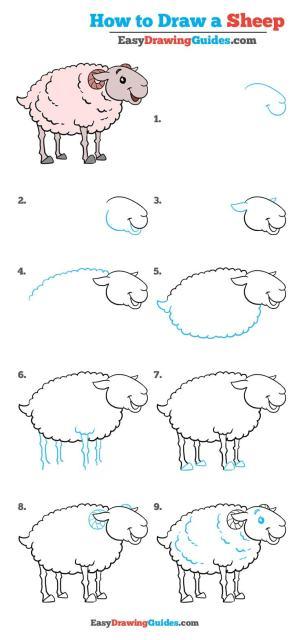 sheep draw easy drawing tutorial really step drawings easydrawingguides cartoon farbe malen zeichnen schritt schafe schaf einfach learn lessons tutorials
