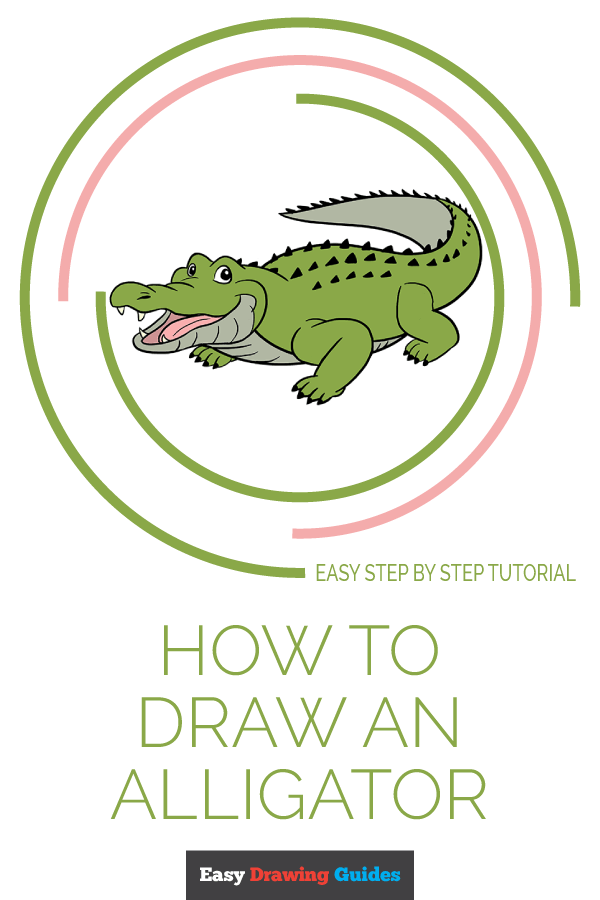 How To Draw An Alligator Head : alligator, Alligator, Really, Drawing, Tutorial