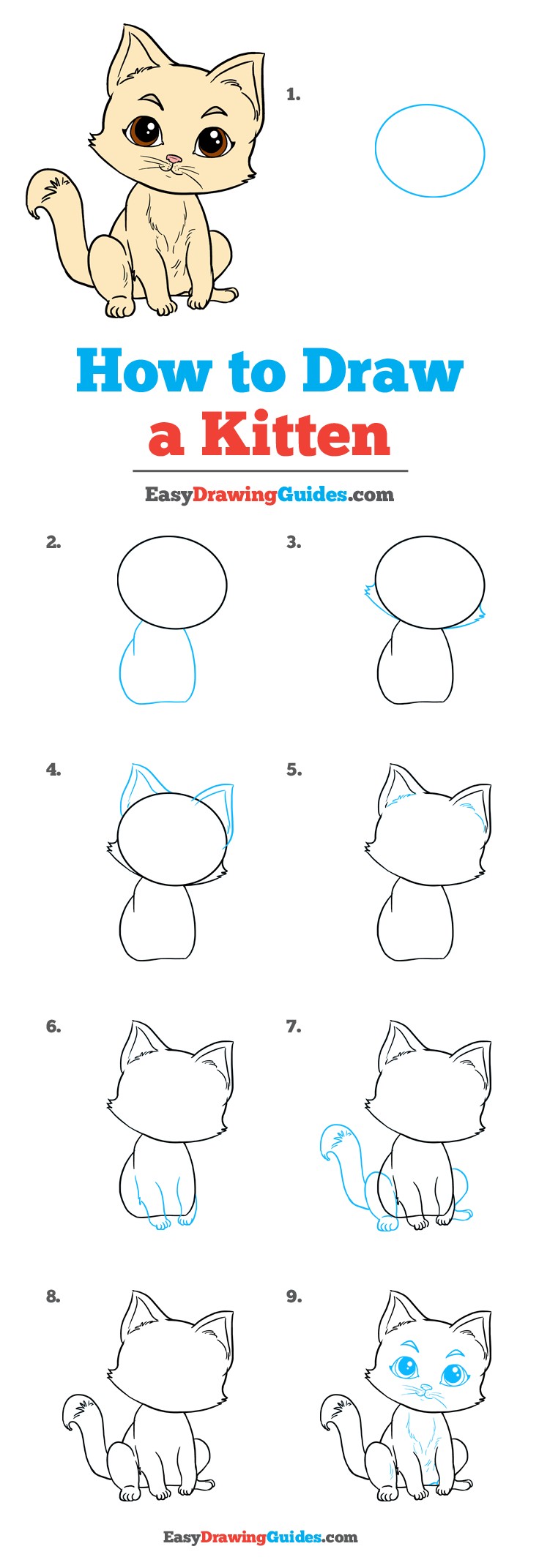 Easy Kitten Drawing : kitten, drawing, Kitten, Really, Drawing, Tutorial