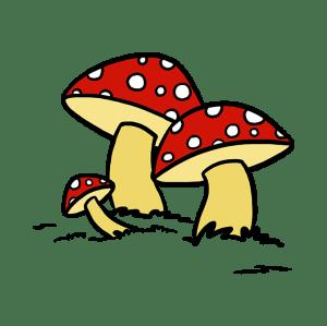 mushroom draw drawing drawings cartoon shroom mushrooms easy brown pink bright purple colors clipartmag come many