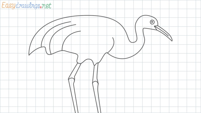 How to Draw a Crane Step by Step for Beginners: 9 Simple phase