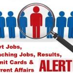 jobs 2d