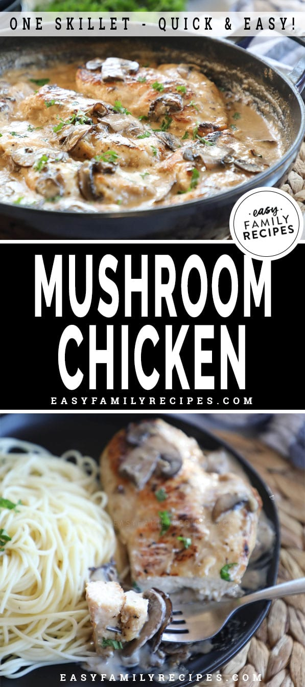 Chicken with Mushroom Cream Sauce in a skillet and served on a plate
