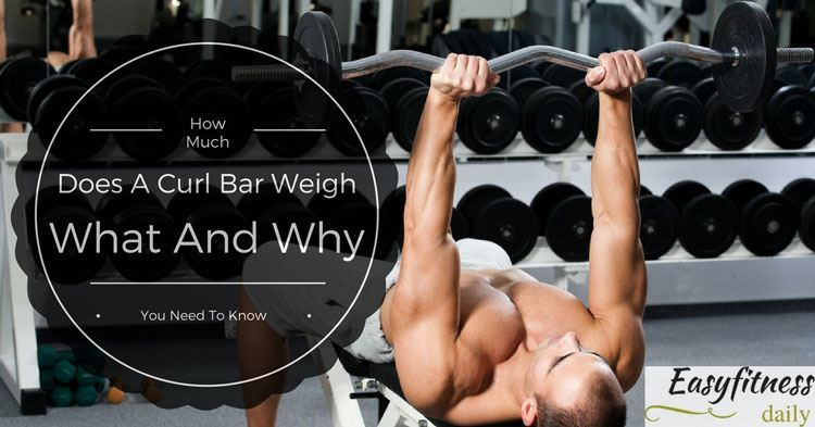 How Much Does A Curl Bar Weigh: What And Why You Need To Know