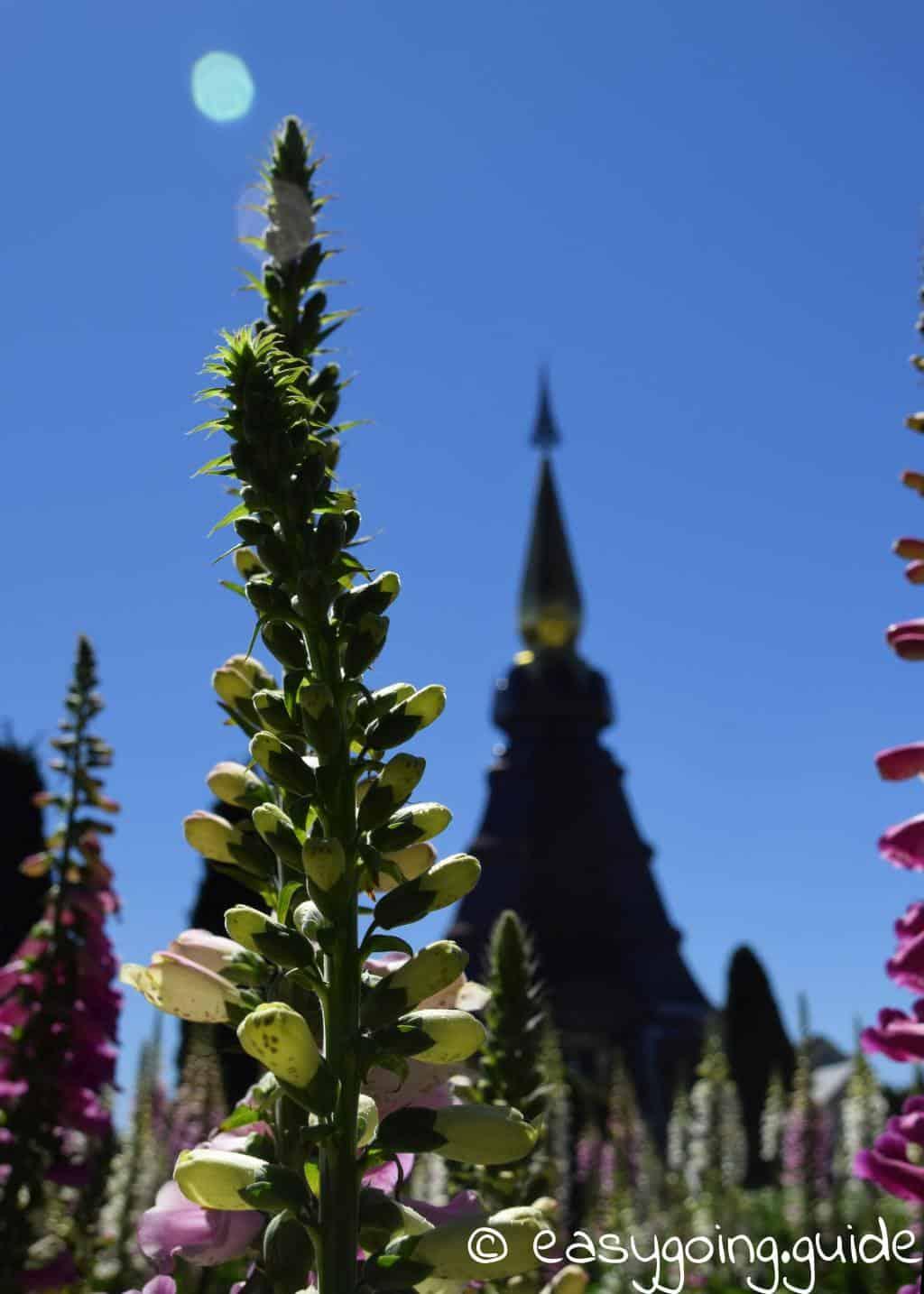 Doi Inthanon Chedi mit Blumen