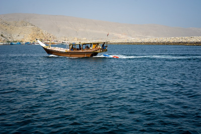 Dolphin watching cruise in a dhow in Oman