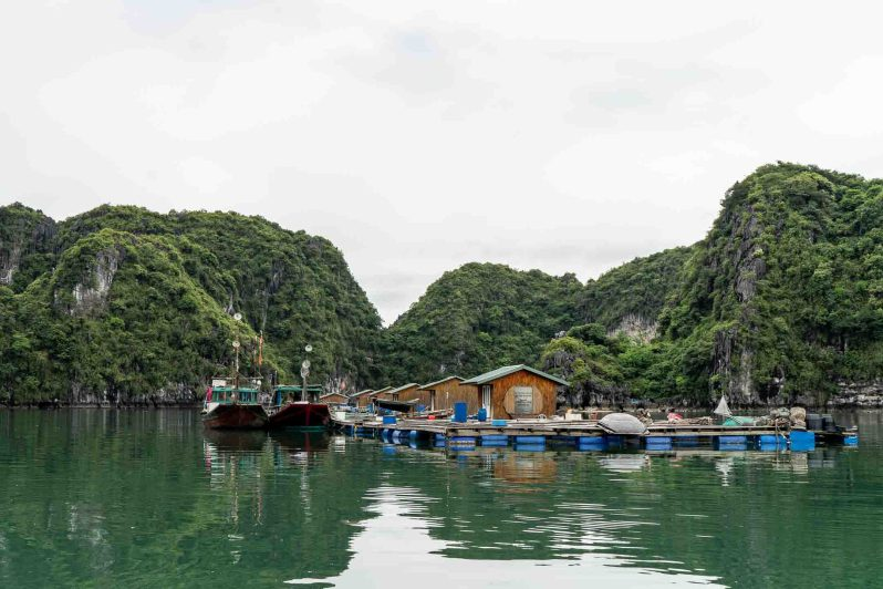 Vietnam - floating fishing village