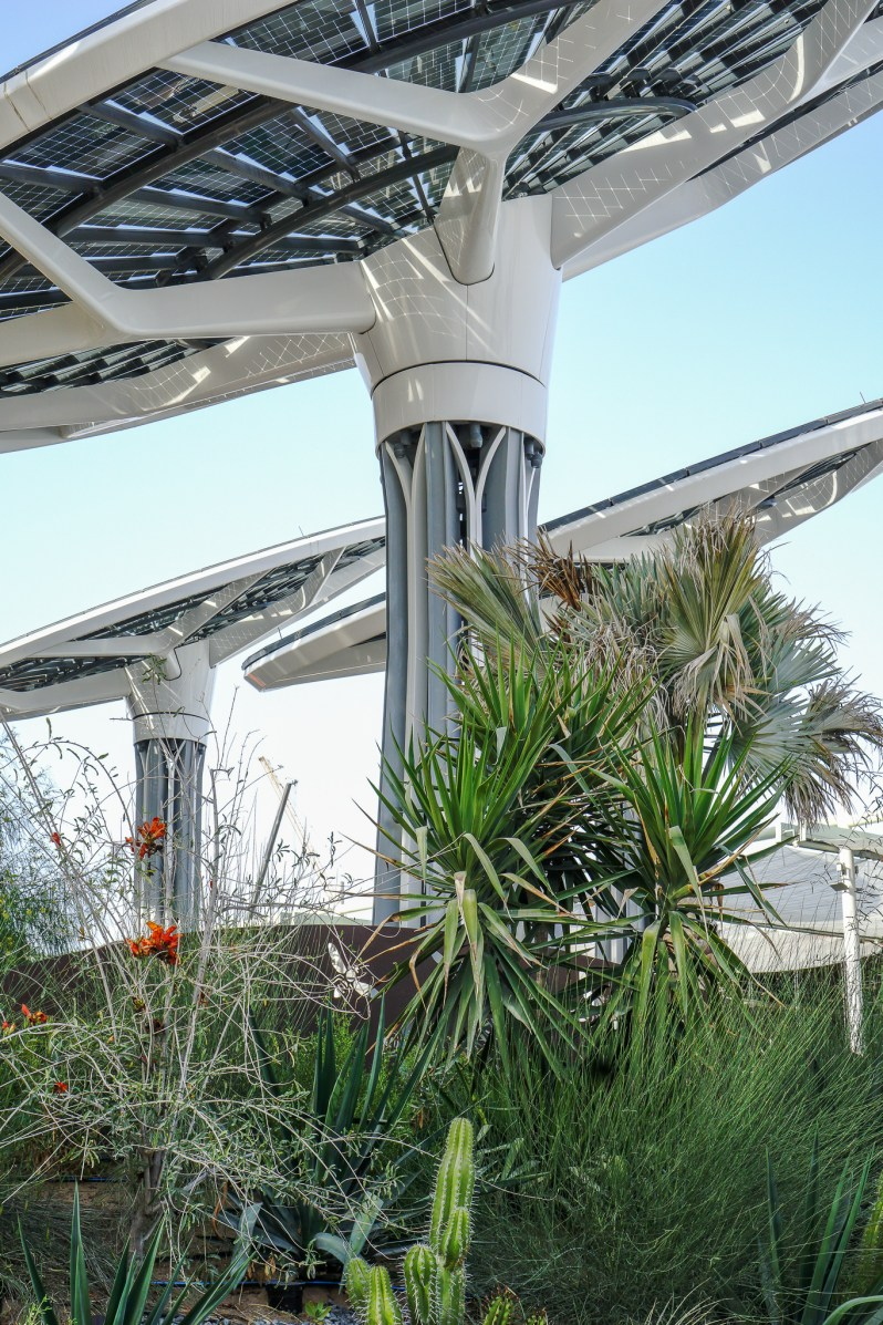 Terra Sustainability Pavilion