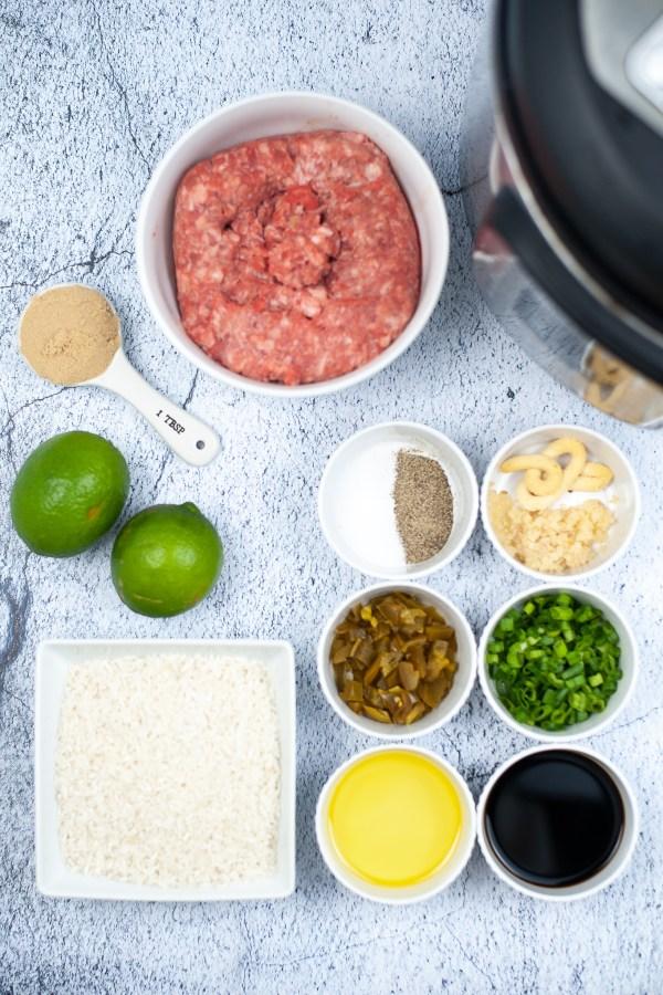 Vietnamese recipe in the Instant Pot