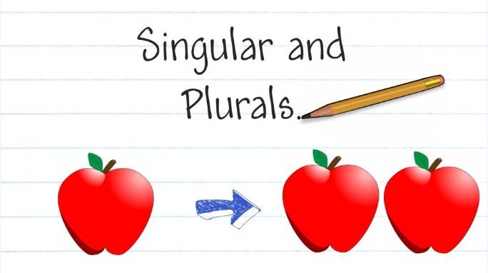 Italian Nouns  Singular To Plural Exercise (3)  Easy Learn Italian