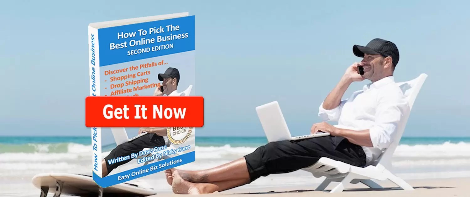 How to Pick the Best Online Business eBook 2nd Edition header slide