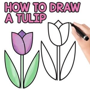 tulip easy draw step drawing directed fun tutorial