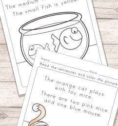 Animals Read and Color Reading Comprehension Worksheets - Easy Peasy  Learners [ 1400 x 700 Pixel ]