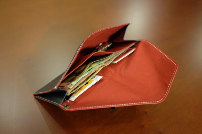 旅行財布の中身が見えるように開いたところ