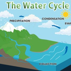 Water Cycle Diagram With Questions Power Wiring Quiz About The Archives Facts Easy Science For Kids Free Interactive General