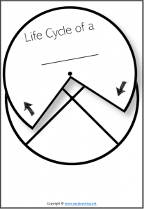 Life Cycle Worksheets. Biological Science Resources